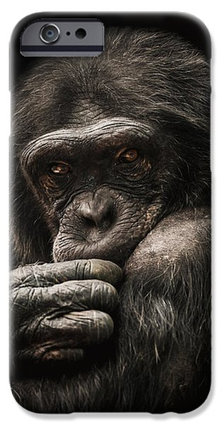 Chimpanzee iPhone 6s Case - Introvert by Paul Neville