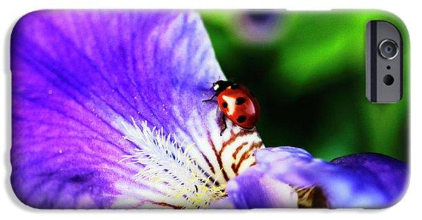 Iris And Ladybug IPhone 6s Case