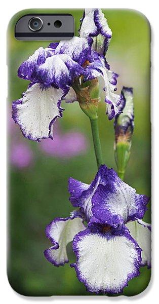 Iris Loop The Loop  IPhone 6s Case