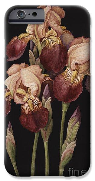Irises IPhone 6s Case by Jenny Barron