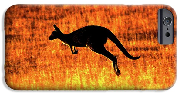 Kangaroo Sunset IPhone 6s Case by Bruce J Robinson
