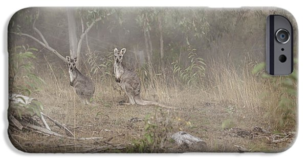 Kangaroos In The Mist IPhone 6s Case