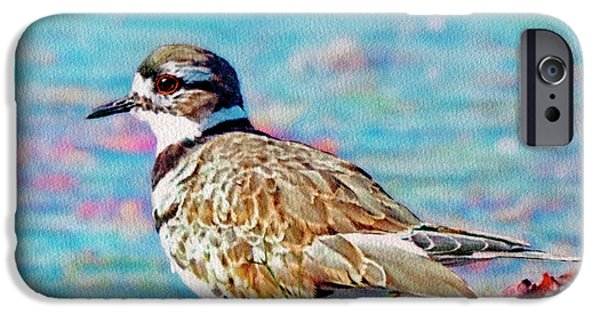 Killdeer  IPhone 6s Case by Ken Everett