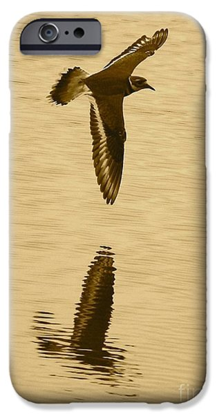 Killdeer Over The Pond IPhone 6s Case by Carol Groenen