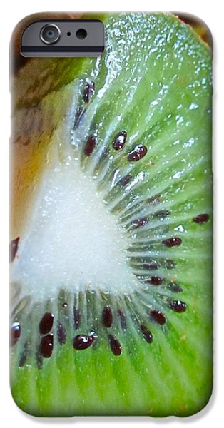 Kiwi Seed Display IPhone 6s Case by Gwyn Newcombe