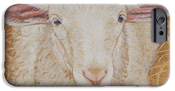 Sheep iPhone 6s Case - Lamb Of God by Christine Belt