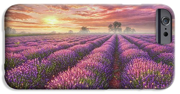 Lavender Field IPhone 6s Case