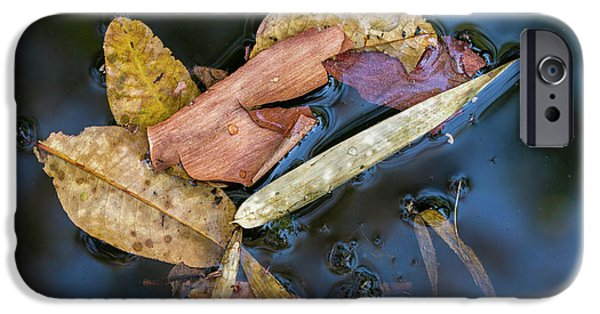 IPhone 6s Case featuring the photograph Leaf Litter In Pond, Navegaon, 2011 by Hitendra SINKAR