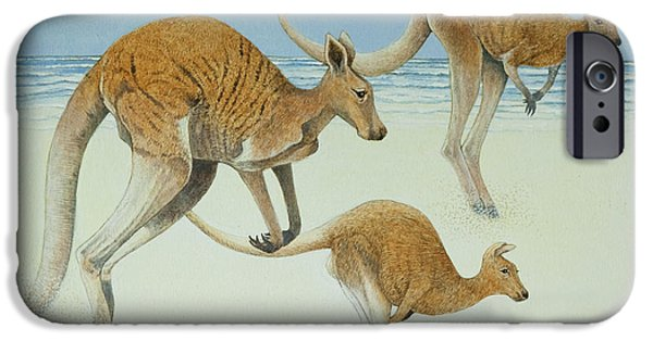Kangaroo iPhone 6s Case - Leaping Ahead by Pat Scott