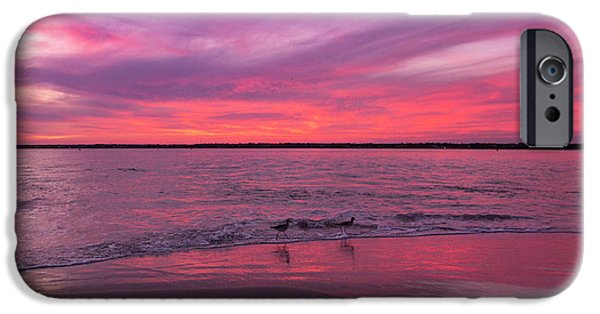 Sandpiper iPhone 6s Case - Leave Us To Dream 2 by Betsy Knapp