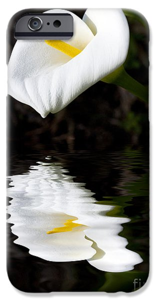 Lily Reflection IPhone 6s Case by Avalon Fine Art Photography