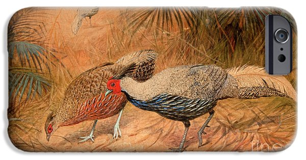 Pheasant iPhone 6s Case - Lineated Kaleege by Joseph Wolf