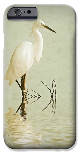 Little Egret IPhone 6s Case by Sharon Lisa Clarke