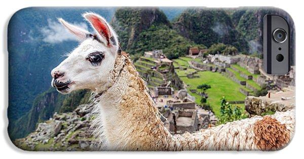 Llama At Machu Picchu IPhone 6s Case by Jess Kraft