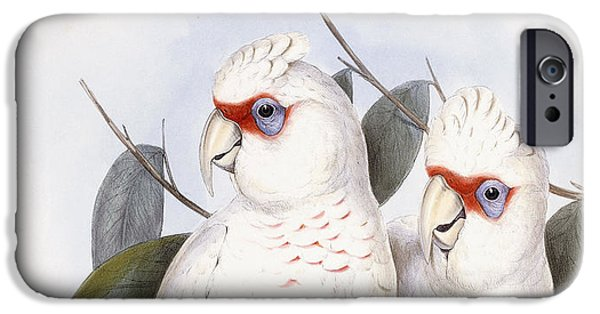 Cockatoo iPhone 6s Case - Long-billed Cockatoo by John Gould
