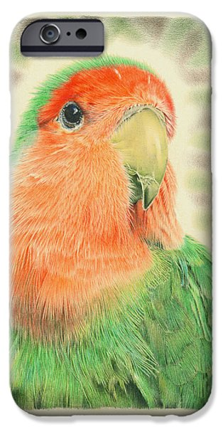 Lovebird Pilaf IPhone 6s Case