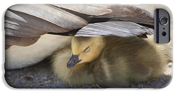 Gosling iPhone 6s Case - Made In The Shade by Donna Kennedy