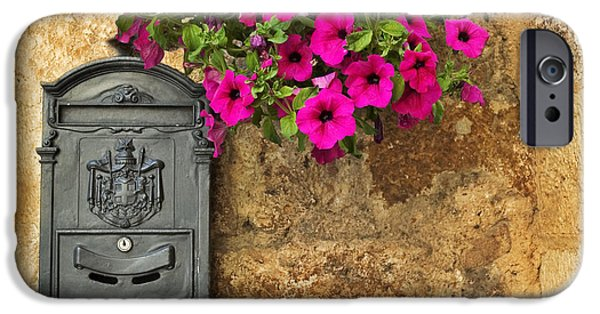 Mailbox With Petunias IPhone 6s Case