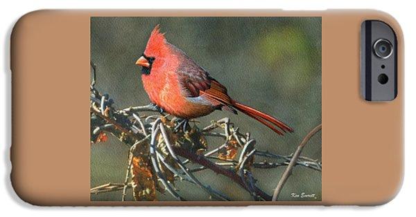 Male Cardinal IPhone 6s Case by Ken Everett