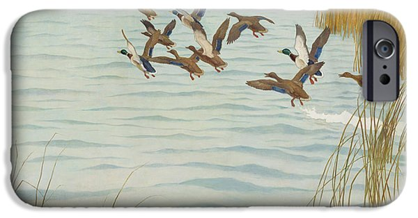 Mallards In Autumn IPhone 6s Case by Newell Convers Wyeth