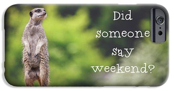 Meerkat Asking If It's The Weekend Yet IPhone 6s Case