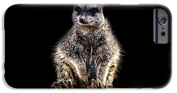 Meerkat Lookout IPhone 6s Case