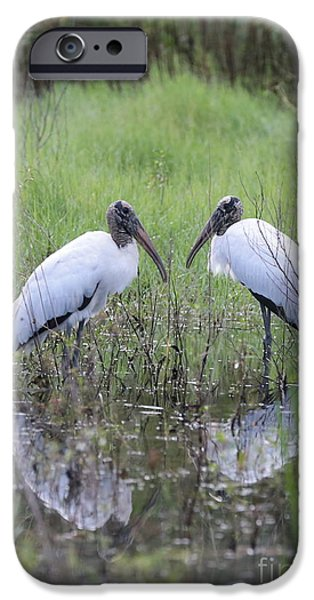 Meeting Of The Minds IPhone 6s Case by Carol Groenen
