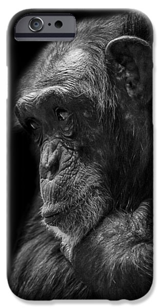 Chimpanzee iPhone 6s Case - Melancholy by Paul Neville