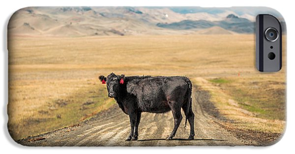 Cow iPhone 6s Case - Middle Of The Road by Todd Klassy