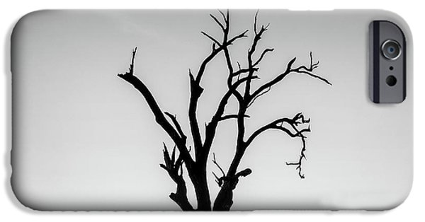 New Leaf iPhone 6s Case - Missing by Az Jackson
