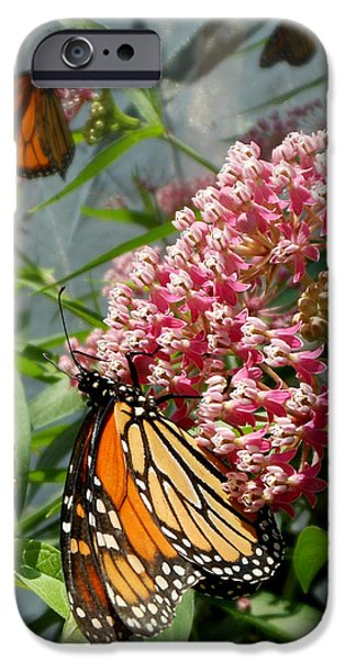 Monarch Arc IPhone 6s Case
