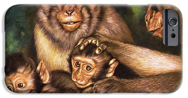 Monkey Family IPhone 6s Case