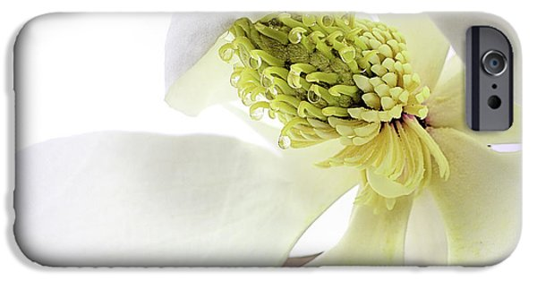 IPhone 6s Case featuring the photograph Morning Dew Magnolia by JC Findley