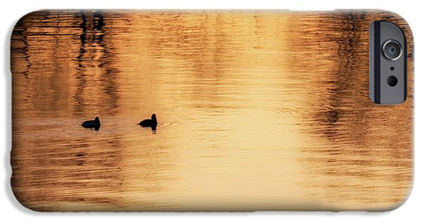 IPhone 6s Case featuring the photograph Morning Ducks 2017 Square by Bill Wakeley