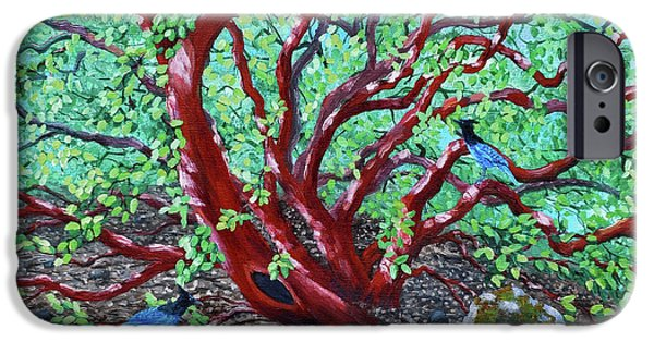 Morning Manzanita IPhone 6s Case by Laura Iverson
