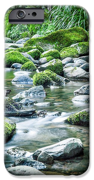 New Leaf iPhone 6s Case - Mossy Forest Stream by Az Jackson