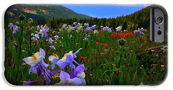 IPhone 6s Case featuring the photograph Mountain Wildflowers by Karen Shackles