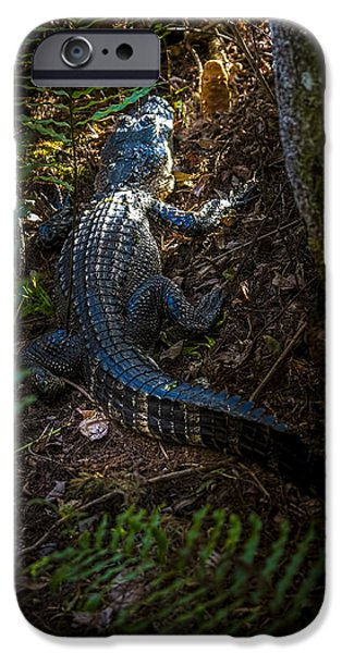 Mr Alley Gator IPhone 6s Case by Marvin Spates