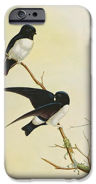 Nepal House Martin IPhone 6s Case by John Gould