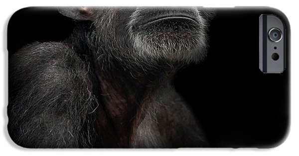 Chimpanzee iPhone 6s Case - Noble by Paul Neville