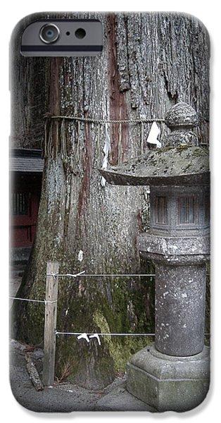Old Tree IPhone Case by Naxart Studio
