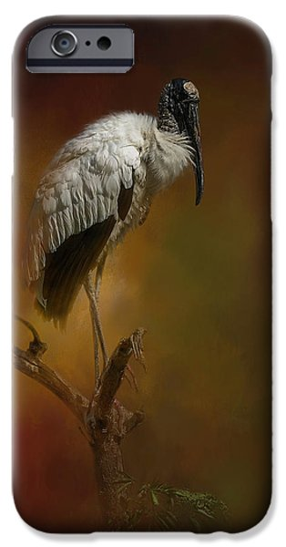Stork iPhone 6s Case - On The Fork by Marvin Spates