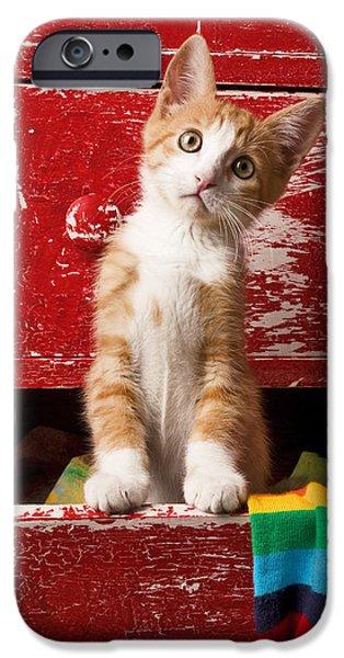 Animals iPhone 6s Case - Orange Tabby Kitten In Red Drawer  by Garry Gay