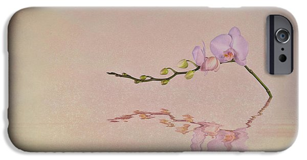 Orchid Blooms And Buds IPhone 6s Case by Tom Mc Nemar