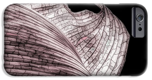 Orchid iPhone 6s Case - Orchid Leaf Macro by Tom Mc Nemar