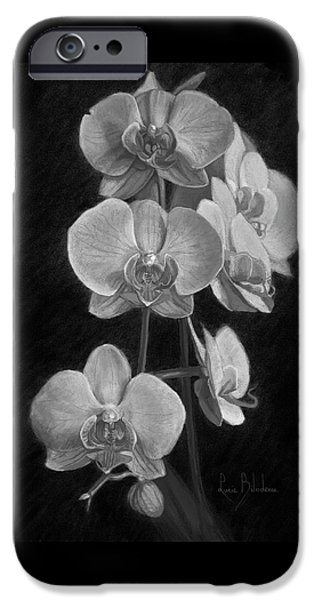 Orchids - Black And White IPhone 6s Case by Lucie Bilodeau