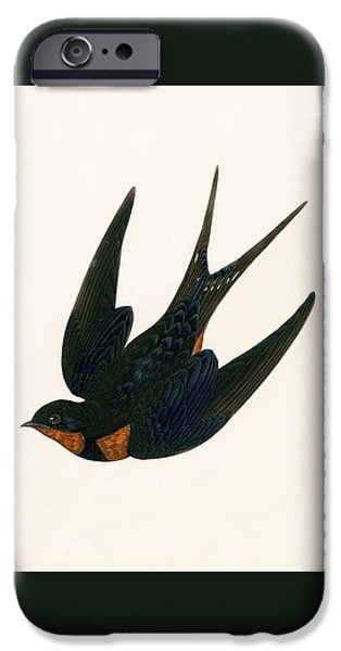 Oriental Chimney Swallow IPhone 6s Case by English School