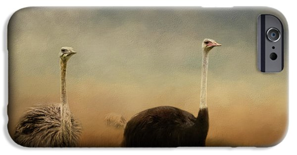Ostrich Couple IPhone 6s Case
