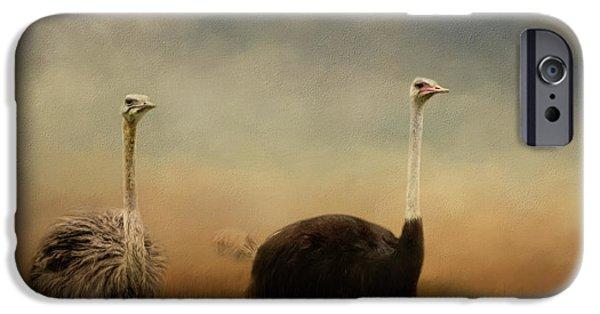 Ostrich Couple IPhone 6s Case by Jai Johnson