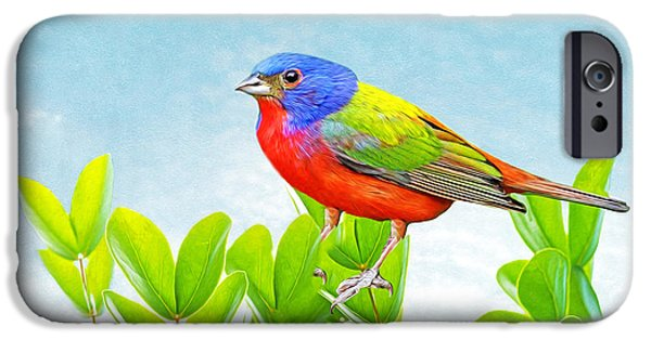 Painted Bunting IPhone 6s Case
